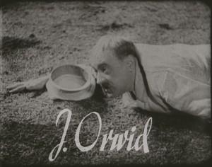 Orwid